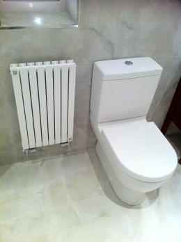 Ensuite shower room, w.c. and decor radiator